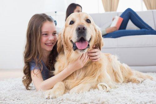 Познакомьтесь с собакой, которая любит фильмы ужасов