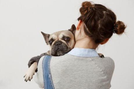 Вещи, которые ваша собака ненавидит