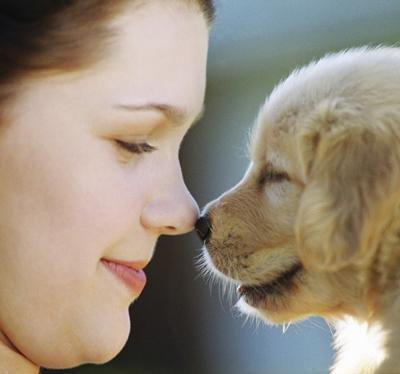 Уважение к животным