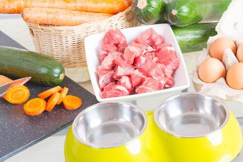 Праздничный ужин для собаки: советы и рецепты