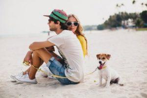 Лучший момент для прогулки с собакой